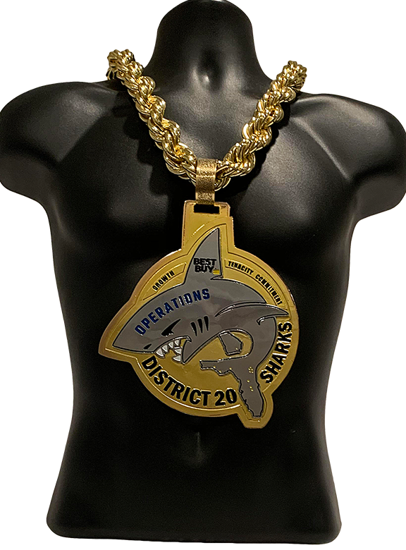 Best Buy District 20 Sales Award Championship Chain